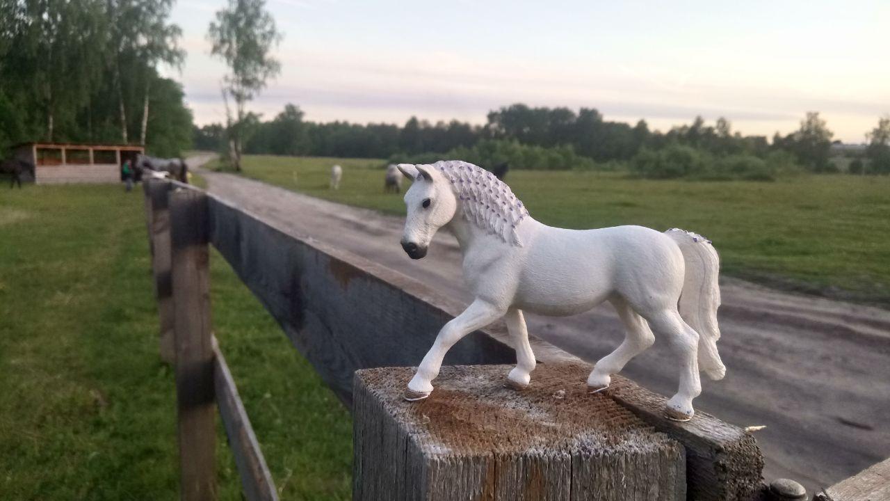 Schleich лошади